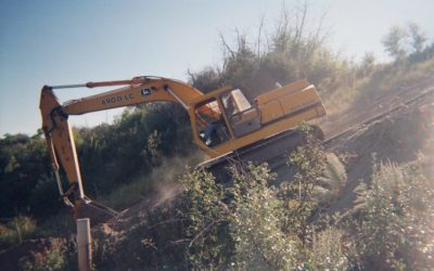 excavator with shrubbery and low sun